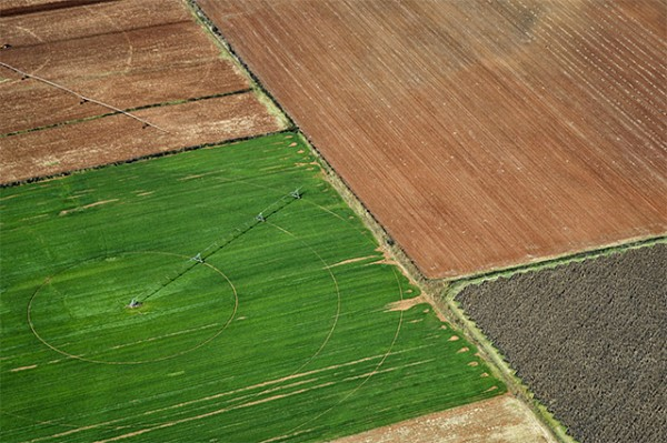 Local union warns South Africa that AGOA eligibility under threat if land expropriation goes ahead