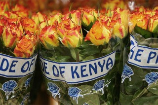 Kenya looks beyond apparel to double earnings from AGOA