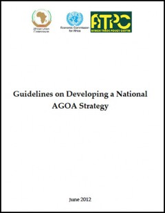 Guidelines on developing a national AGOA strategy